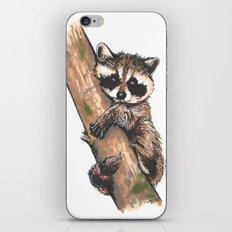 Little raccoon iPhone & iPod Skin