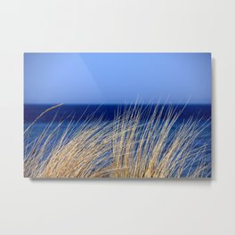 Beach Grass Metal Print