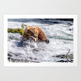 Brown Bear Fishing for Salmon Art Print