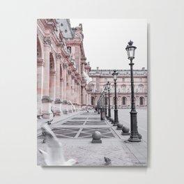 French Pigeons Metal Print