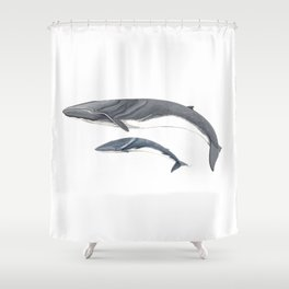 Fin whale Shower Curtain
