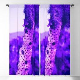 Aging Cactus Stalk Blackout Curtain