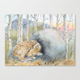 On the Stone, Fawn sleeping on stone Canvas Print
