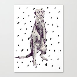 Meerkat in the Rain Canvas Print