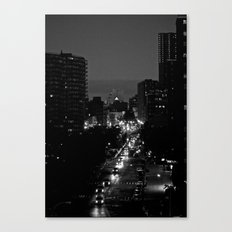 Night Eyes Canvas Print