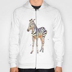 zebra, baby zebra, african wildlife, black and white, stripes, safari art Hoody