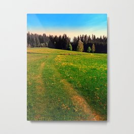 Outdoors in sunny spring Metal Print