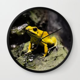 Golden Dart Frog Wall Clock