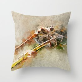 "Dragonfly ""Sympetrum striolatum"" - watercolor Throw Pillow"