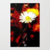 plant Canvas Prints featuring plant by Lars Tuchel
