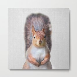 Squirrel - Colorful Metal Print