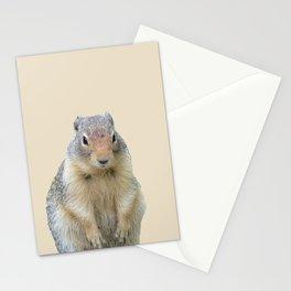Marmot Illustration Stationery Cards