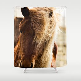 A Pony in Iceland Shower Curtain