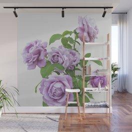 winter rose . image . Wall Mural