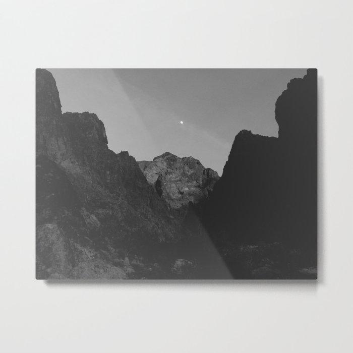 Palm Canyon Metal Print