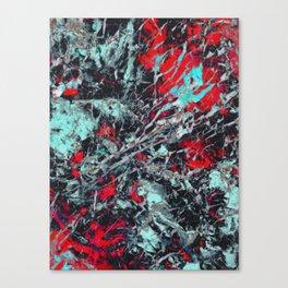 α Equuleus Canvas Print