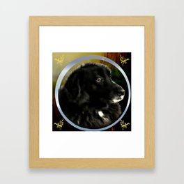 Portrait of a Dog Framed Art Print