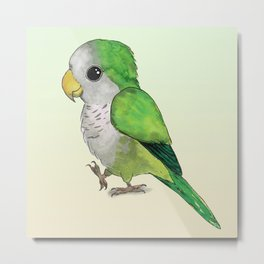 Very cute green parrot Metal Print