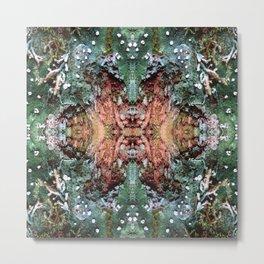 Epiphyte Metal Print