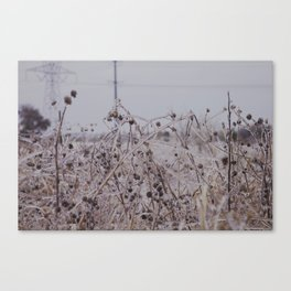 Clear Canvas Print