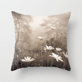 Daisies in the Fog, Guy Fleming Trail, Torrey Pines Throw Pillow