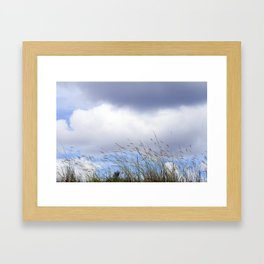 Swaying in the Breeze Framed Art Print