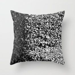Cross Section Throw Pillow
