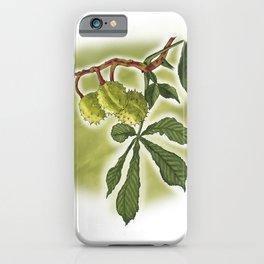 Horse Chestnut iPhone Case