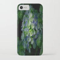 hydrangea iPhone & iPod Cases featuring Hydrangea by Sartoris ART