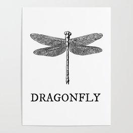 Dragonfly Vintage Illustration Poster