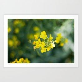 pretty little weeds Art Print