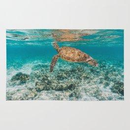 Turtle ii Rug
