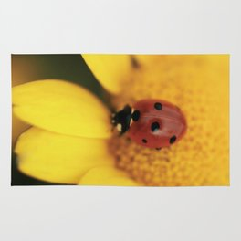 Ladybug on yellow flower - macro still life - fine art photo for interior design Rug