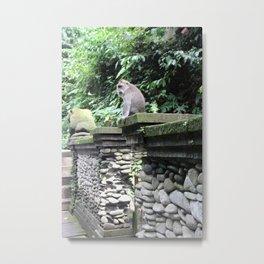 Monkey Statue Metal Print
