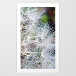 Time For Me To Fly 2 Art Print