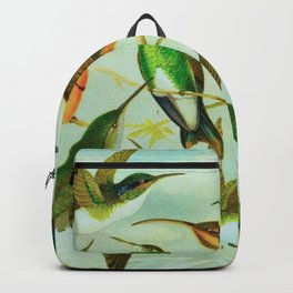 Amazonian birds by Göldi & Emil Brazil Colorful Tropical Birds Illustration Hummingbirds Backpack