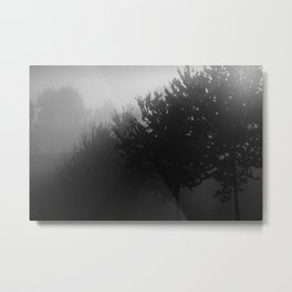 Trees in the Mist (1) Metal Print