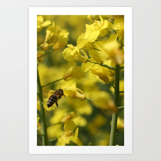 Bees Fly Art Print