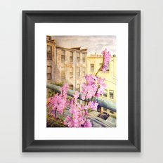 Urban Beauty Framed Art Print