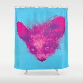 aleph-zero singularity Shower Curtain