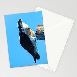 Osprey On A Pole Stationery Cards