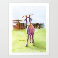 Knobby Knee Goat  Art Print