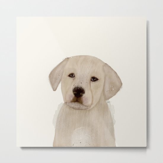 little labrador Metal Print