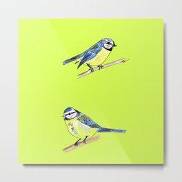 Blue Tits on Lime Metal Print