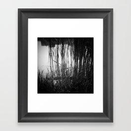 Reeds #1 Framed Art Print