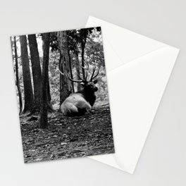 Elk Laying Down in Woods Stationery Cards