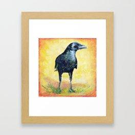 Cautious Crow Framed Art Print