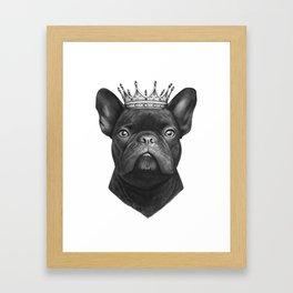 King french bulldog Framed Art Print