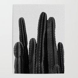 Cactus Black & White Poster