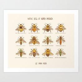 Native Bees of North America Art Print